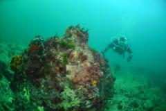 P-Beaumont-Rare-VSAG-diver-Hurricane-Wreck